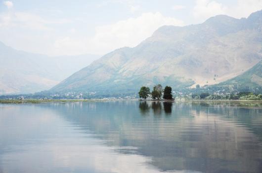達爾湖上的梧桐涼亭