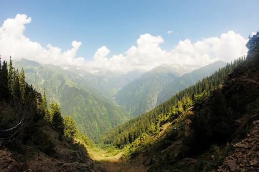 走出樹林後的風景令人期待