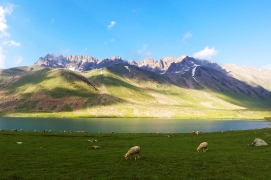 Gangabal湖邊的純淨草原