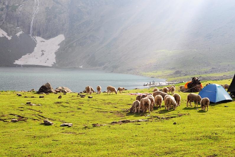 Gangabal湖的黃昏呈現金黃的光線