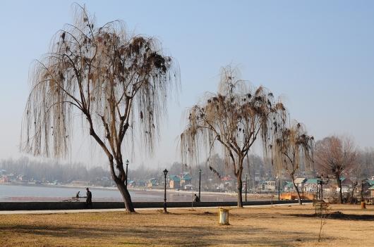 Manasbal湖畔建有步道,可沿著湖畔散步環湖