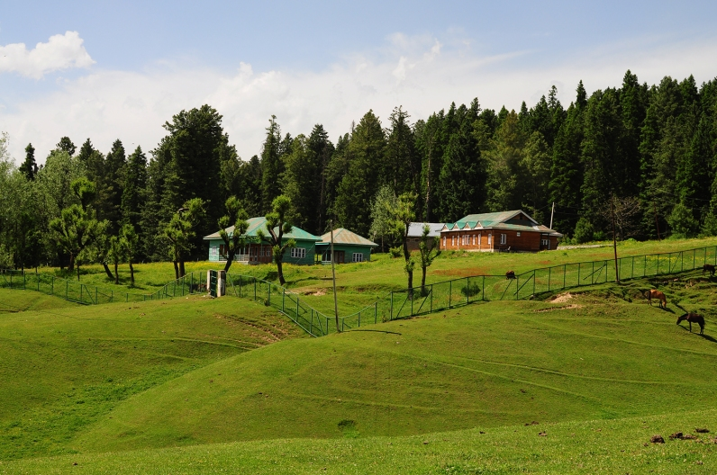 政府特地為觀光建造的VIP民宿