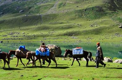 馬隊完成拔營,出發。2016年8月下旬