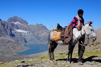 LiLi是Laga的馬,父親交代LiLi只能用來載人