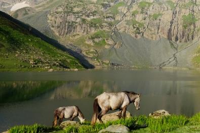 早晨的Nundkol湖(八月上旬)