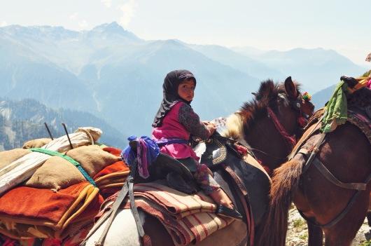 Linnie Traveler / 2017 Kashmir Seven Great Lakes Trekking