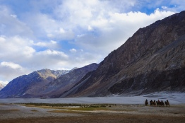 Linnie Traveler / Nubra Valley 2017