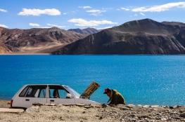 Linnie Traveler / Pangong Lake
